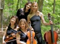 Omni-Quartet